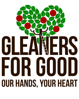 Projects-Gleaners